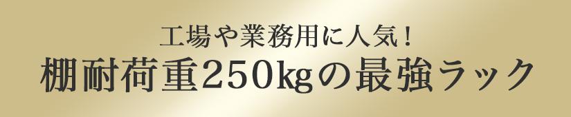 工場や業務用に人気!棚耐荷重250kgの最強ラック